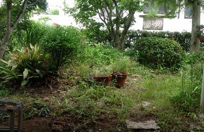 庭の清掃(前)