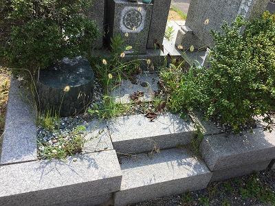 お墓の清掃(前)